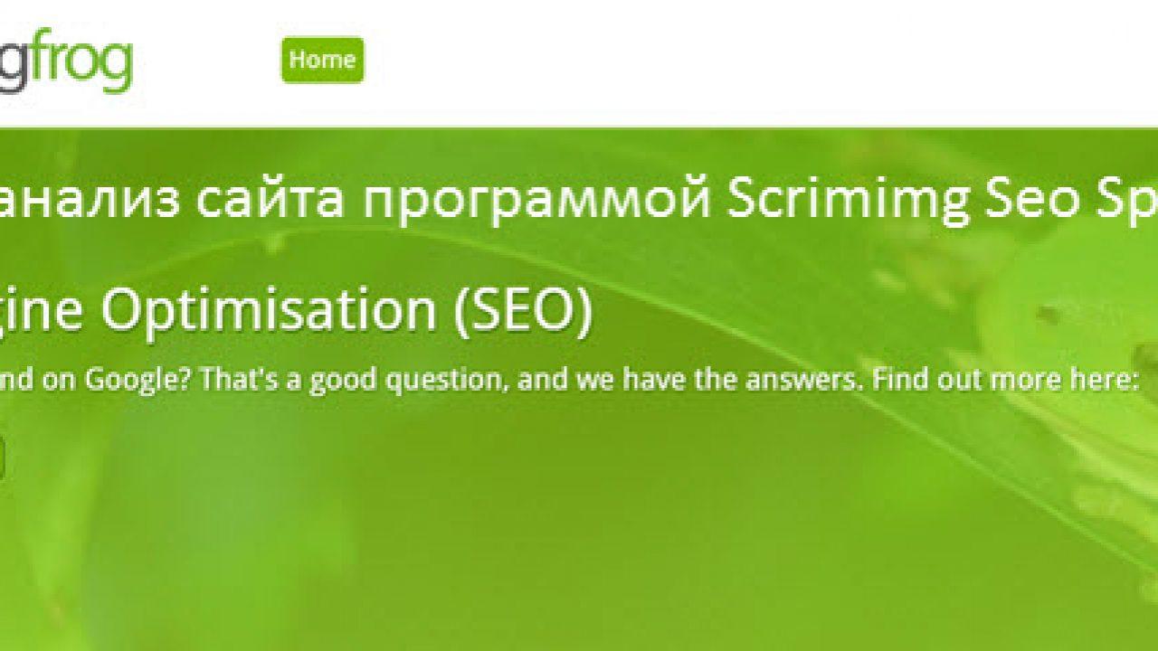 программа проверки seo сайта