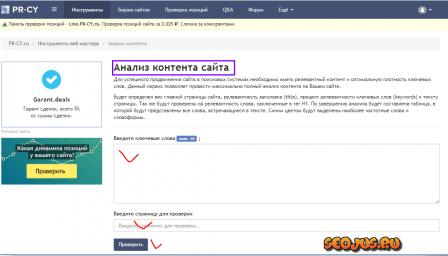 pr-cy.ru для анализа релевантности
